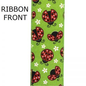 LADY BUG RIBBON FRONT