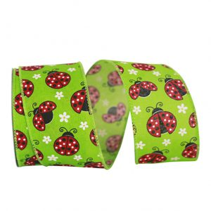 LADY BUG RIBBON