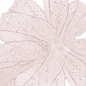 Pink Bolton Ribbon